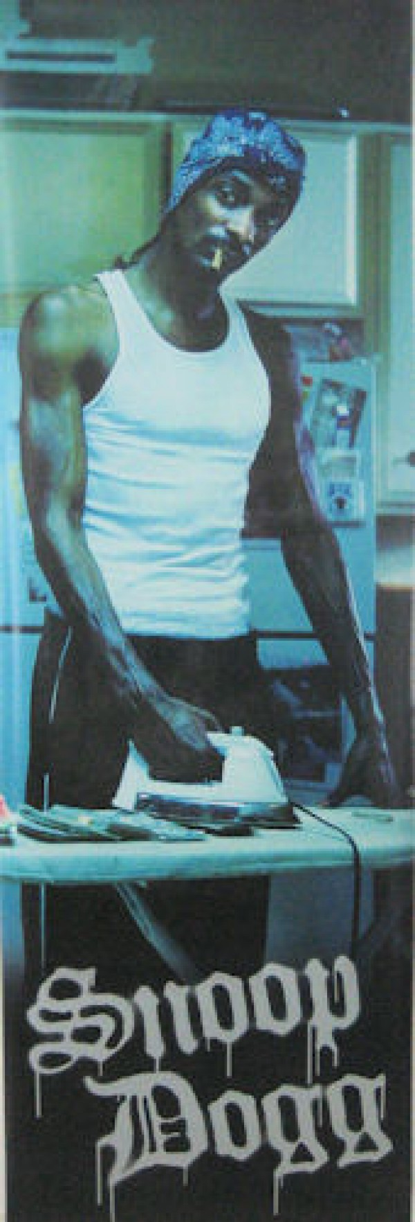 Snoop Dogg Ironing Door Poster