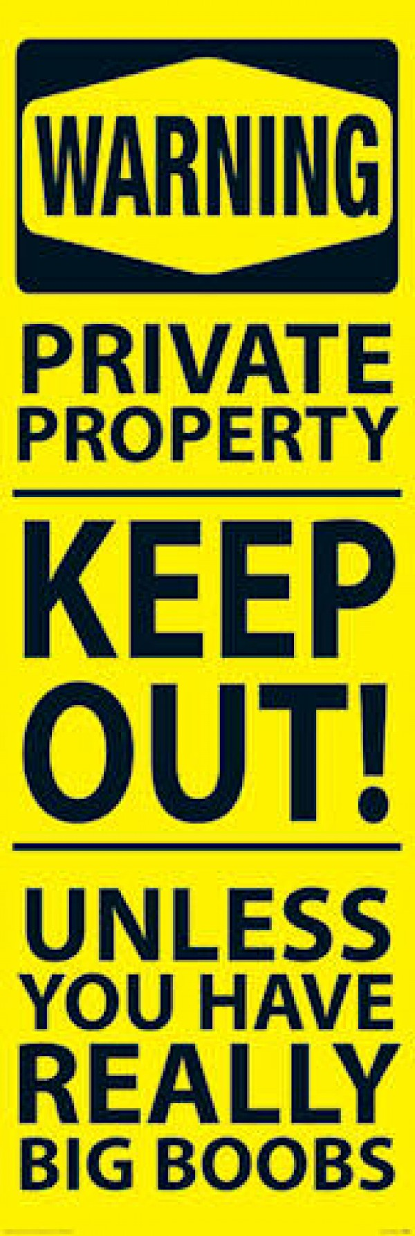 Warning Keep Out Door Poster