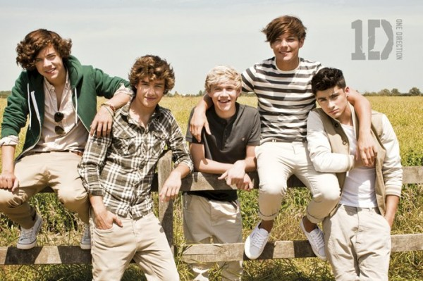 One Direction (Summer) Poster