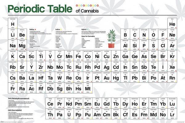 Cannabis (Periodic Table) Poster