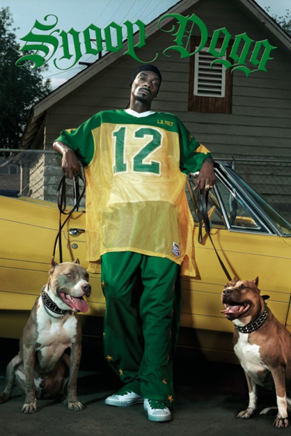 Snoop Dogg Dogs Poster