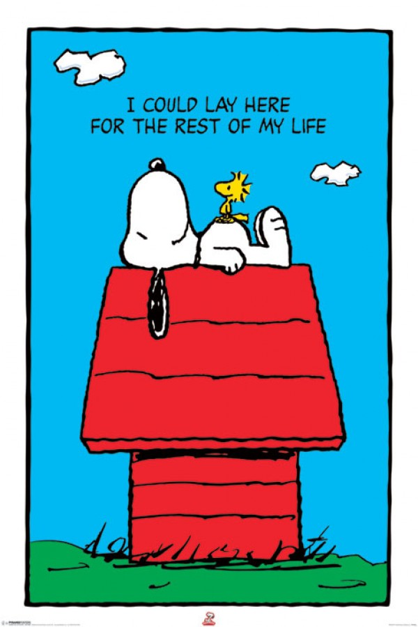 Peanuts Snoopy Poster