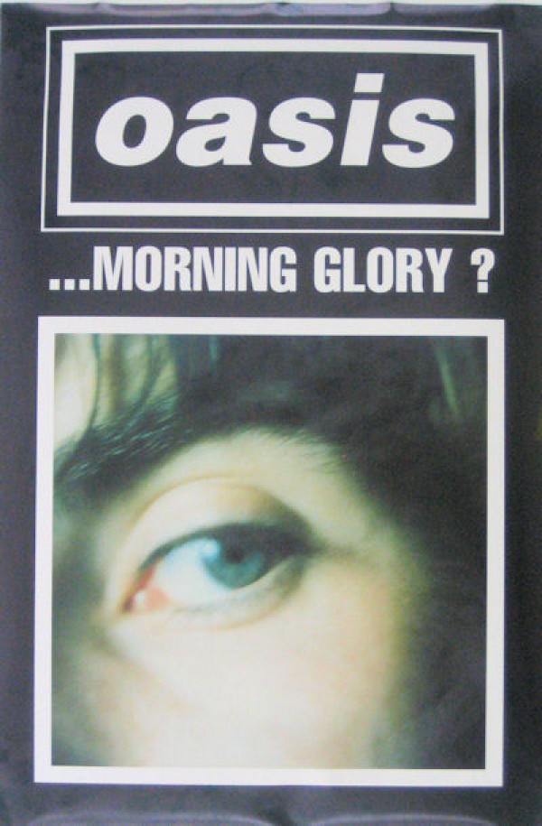 Oasis Morning Glory Poster