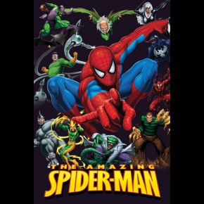 Spiderman & Enemies Poster