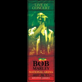 Bob Marley In Concert Door Poster