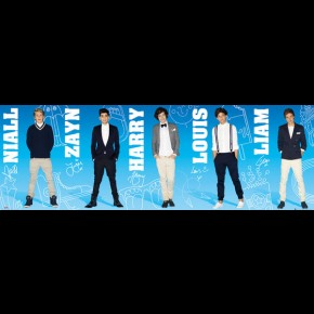 One Direction Panoramic Poster
