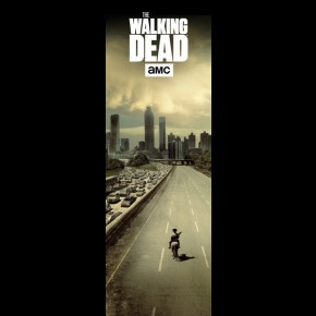 Walking Dead (City) Door Poster