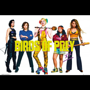 Birds Of Prey (Group) Poster