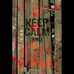 Keep Calm & Kill Zombies Poster