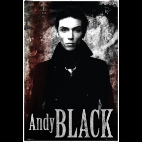 Black Veil Brides (Andy Black) Poster