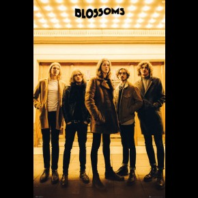 Blossoms (Group) Poster