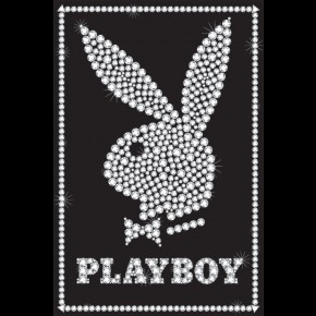 Playboy Bling Poster